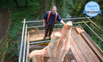 Chainsaw Sculptor Transforms a Storm-Damaged Tree Into a 50ft Hand Instead of Cutting It
