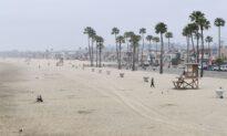 Newport Beach Seeks Public's Help Choosing Public Art