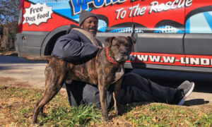 Homeless Man Risks Life to Save 6 Dogs, 10 Cats After Animal Shelter Catches Fire