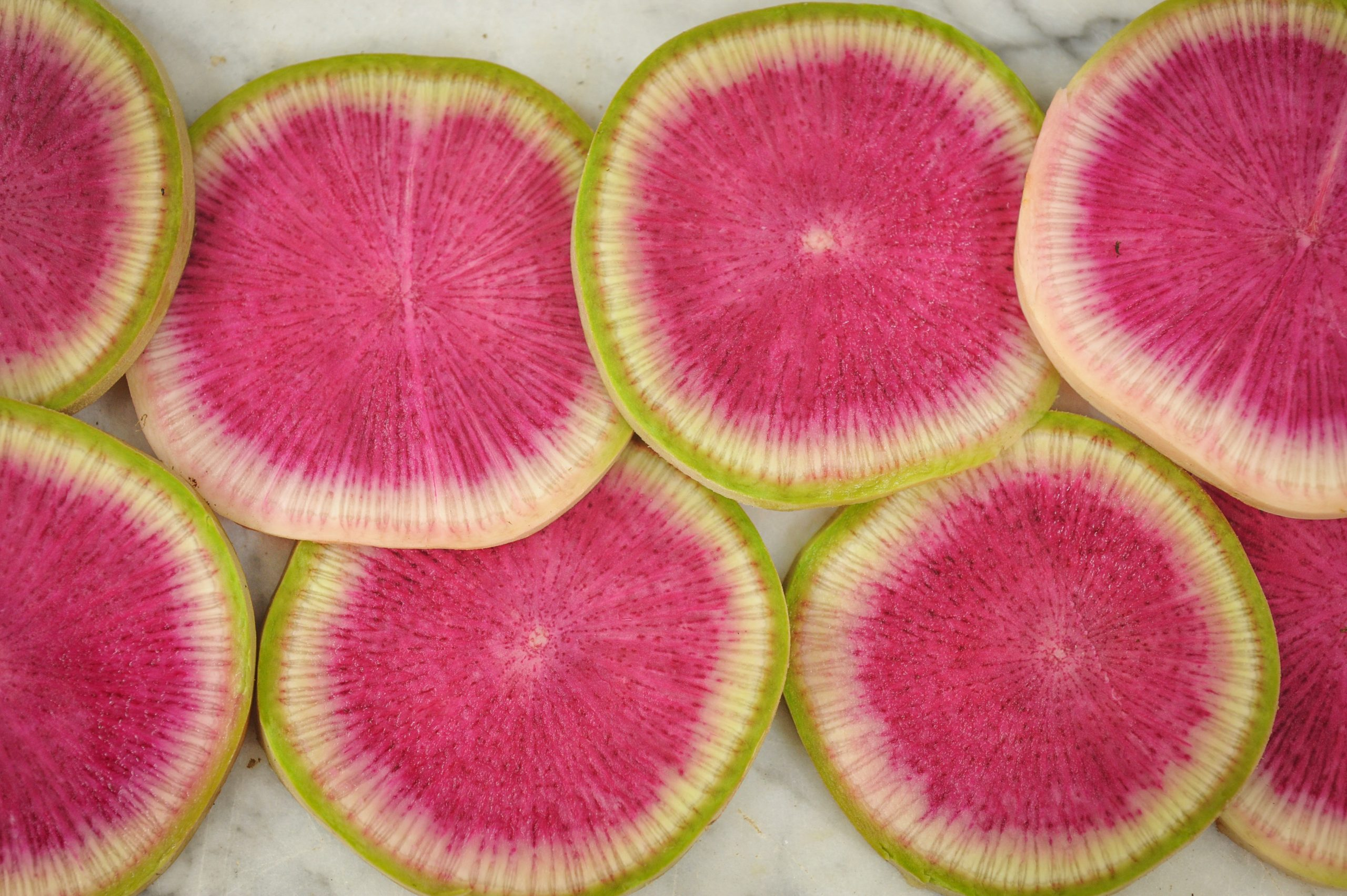 chinese watermelon radish