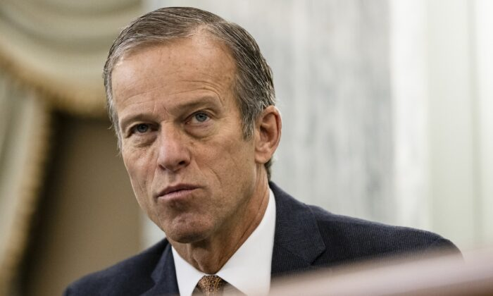Sen. John Thune (R-S.D.) is seen in Washington during a hearing on Dec. 10, 2020. (Samuel Corum/Pool/Getty Images)