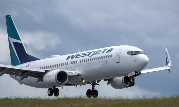 A WestJet flight from Calgary arrives at Halifax Stanfield International Airport in Enfield, N.S., on July 6, 2020. (The Canadian Press/Andrew  Vaughan)
