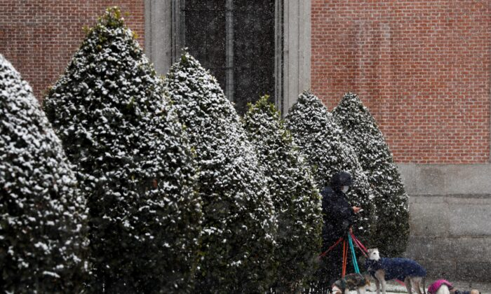A man takes a picture of dogs outside the Prado Museum during a snowfall in Madrid, Spain, on Jan. 7, 2021. (Susana Vera/Reuters)