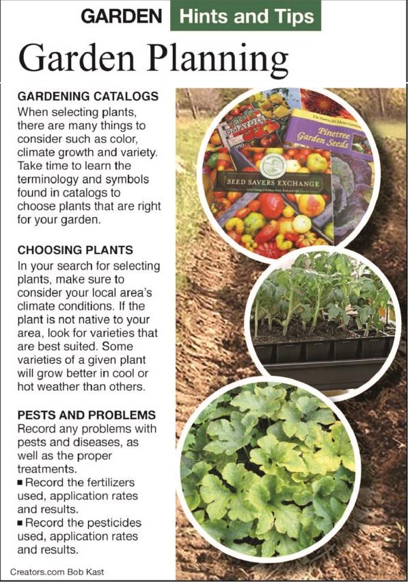 GardenTips.1119