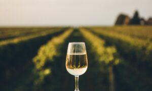 Wine Talk: Big Winners of 2020