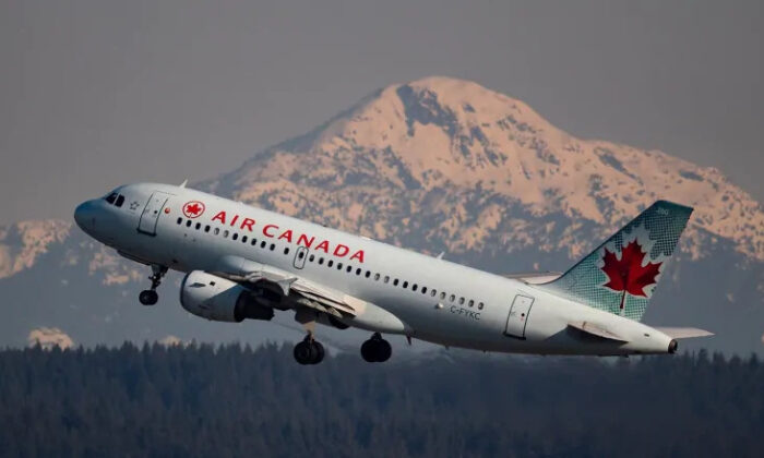 Air Canada is one of the biggest companies in Canada and in one of the industries hit hardest by COVID-19. The company says its capacity in the first quarter of 2021 will be about 20 percent of what it was in the first quarter of 2019. (The Canadian Press/Darryl Dyck)