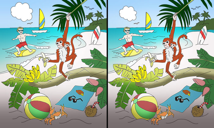 Can You Spot 10 Differences in This Balmy Tropical Beach Scene? (Yes, We Want to Go, Too)