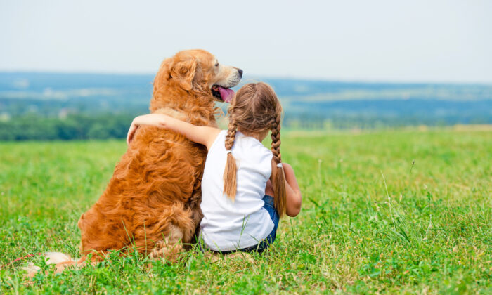 Help young children learn the importance of respect in their interactions with dogs. (In Green/Shutterstock)