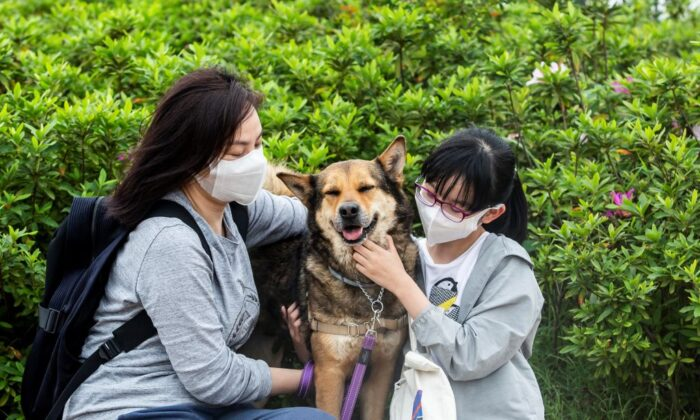 Amy Tran and her daughter Serene Ho cuddle their newly adopted dog Pepper in a dog park at Kai Tak Runway Park in Hong Kong on April 11, 2020. Work-from-home restrictions and the cancellation of school have provided Amy Tran and her daughter Serene Ho, who were looking at getting a dog, the opportunity to rescue Pepper, giving them time for Pepper to settle into the family and Serene to learn how to care for a dog. (ISAAC LAWRENCE/AFP via Getty Images)