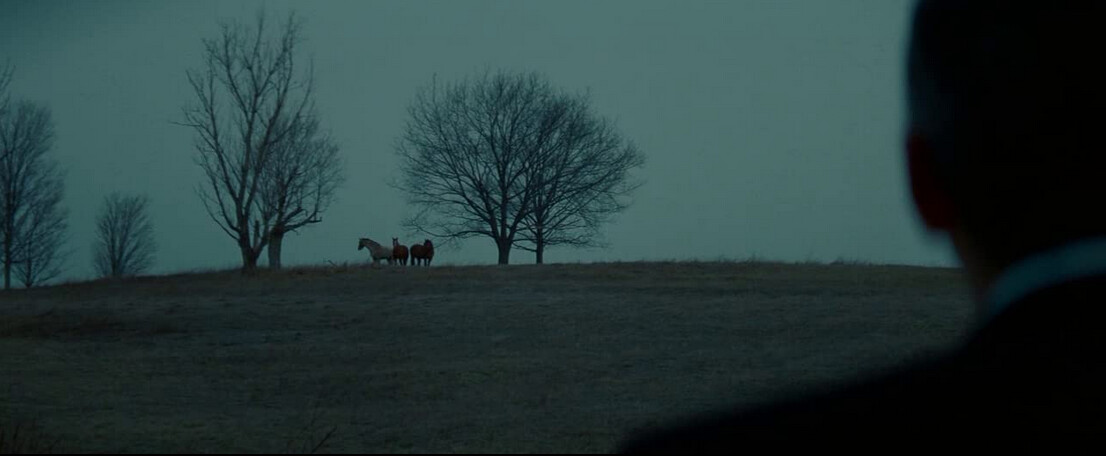 """man looks at horses on a hill in """"Michael Clayton"""""""
