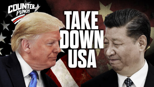 How the CCP Mobilized Its US Networks to Take Down the US