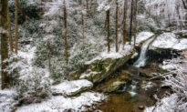 Winter Fun in the Western Carolinas