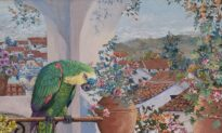 Taking You There: A Veranda of Lush Colors in 'Parrots and Rooftops'