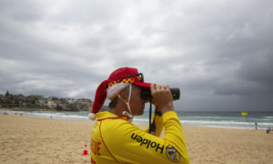 Surf Life Saving Australia Pleads for Caution as Rescue Drownings Surge