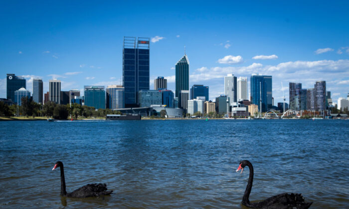 A general view of the Perth City skyline with two native Black Swans on January 8, 2021 in Perth, Australia. (Photo by Matt Jelonek/Getty Images)