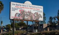 Horse Dies in Training at Los Alamitos