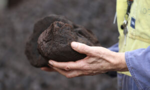 Nationals Push for Coal Investment to Save Jobs