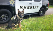 K9 Officer Returns Home After Suffering 2 Gunshot Wounds Chasing Armed Suspect
