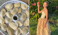 New Zealand Girl Creates Entire Gown From Mango Pits to Shed Light on Food Waste