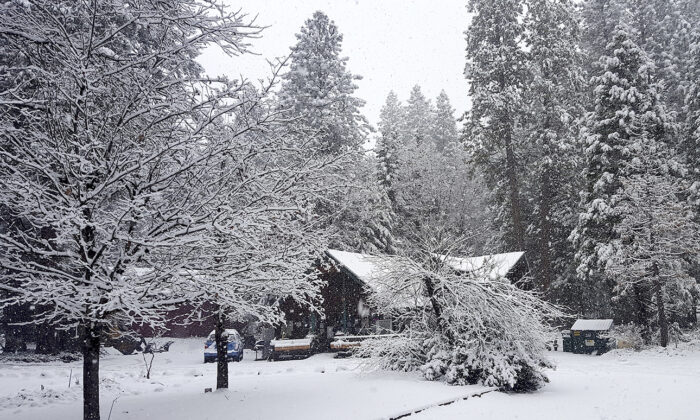 The Cascade Shores General Store is shrouded in a blanket of white snow after the storm system moved through Nevada County, on Jan. 22, 2021. (Liz Kellar/The Union via AP)