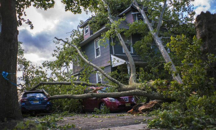 Cars and a house are shown damaged by a fallen tree after Tropical Storm Isaias and its treacherous winds and heavy rain passed through Bogota, N.J., on Aug. 4, 2020. (Eduardo Munoz Alvarez/Getty Images)