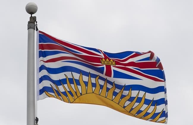 British Columbia's provincial flag flies in Ottawa, on July 3, 2020. A government-commissioned panel is recommending against the introduction of a basic income for all in British Columbia. (The Canadian Press/Adrian Wyld)