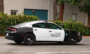 European Visitor Suspected of Anaheim Homicide