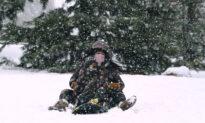 Second Major Snowstorm in a Week Blankets Northeast