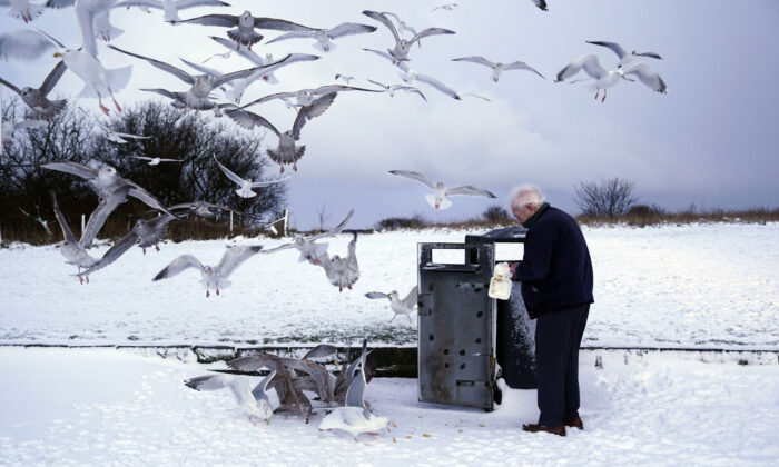 A man feeds scraps to seagulls as the cold snap continues to grip much of the nation, in Whitley Bay, England, on Feb. 10, 2021. (Owen Humphreys/PA via AP)