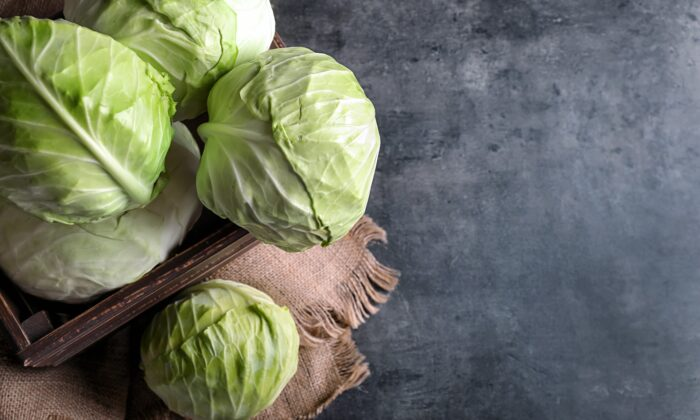 Winter and cabbage go together. (Shutterstock/Pixel-Shot)