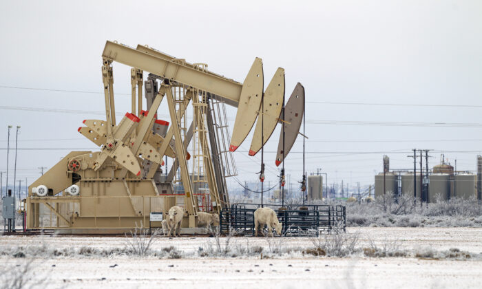 A pump jack array seen in Midland, Texas, on Feb. 13, 2021. (Eli Hartman/Odessa American via AP)