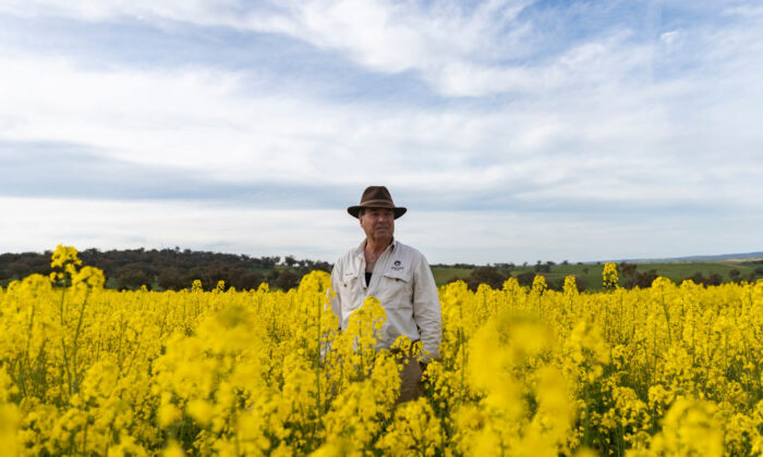 Farmer stands in front of Canola farm.