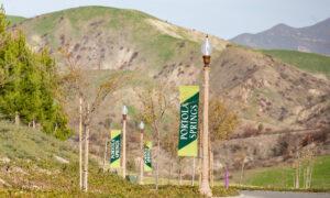 Irvine Officials Say State Housing Mandates Penalize Economic Success