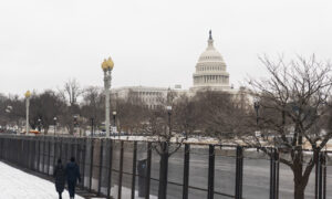 Capitol Police to Increase Security Around March 4 Due to 'Concerning' Intelligence