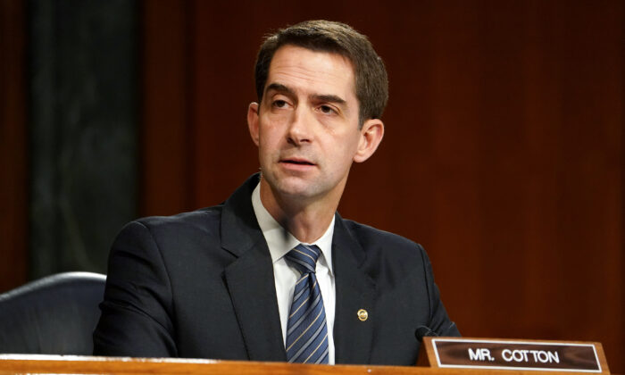 Sen. Tom Cotton (R-Ark.) questions President-elect Joe Biden's nominee for Secretary of Defense, retired Army Gen. Lloyd Austin at his confirmation hearing before the Senate Armed Services Committee at the U.S. Capitol in Washington, on Jan. 19, 2021. (Greg Nash-Pool/Getty Images)