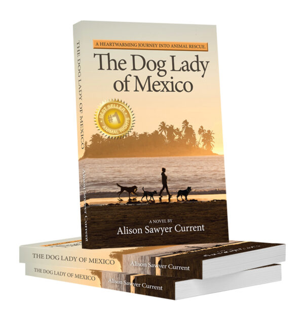 Book cover with best seller -dog lady of mexico