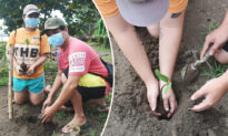 A Philippine City's 'Green Program' Requires Marriage License Applicants to Plant Trees