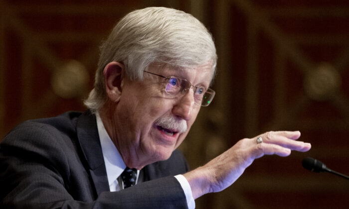 Dr. Francis Collins, director of the National Institutes of Health, appears before a Senate hearing to discuss vaccines, in Washington, on Sept. 9, 2020. (Michael Reynolds- Pool/file/Getty Images)
