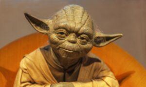 The Wisdom of a Jedi Master