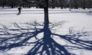 Mild Spring With Some Wintry Blasts Predicted for Most of Canada: Weather Network