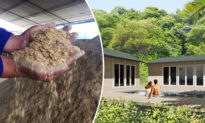 Colombian Builder Creates Homes Literally Made of Coffee, Saves the Day After Hurricane Iota