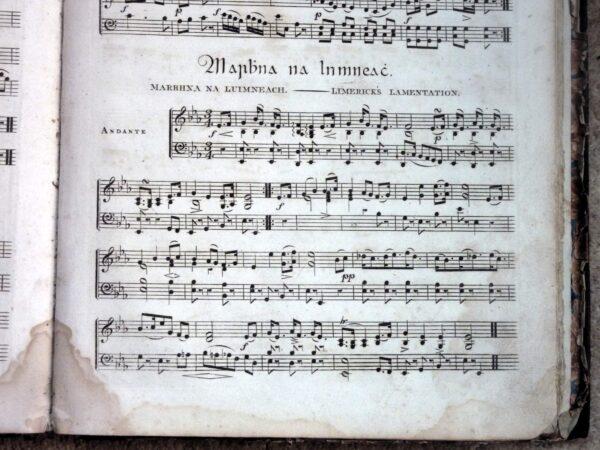 Early Irish Harp