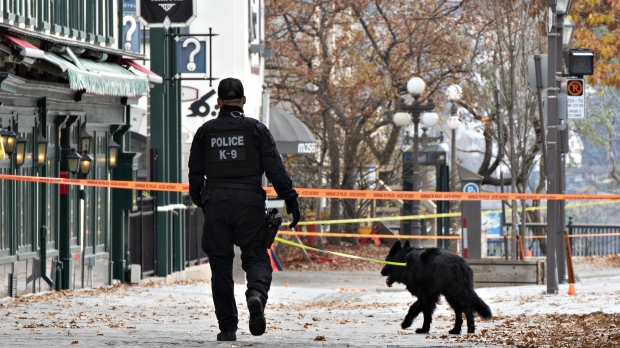 A K-9 unit police officer walks one of several sites of stabbings in Quebec City on Nov. 1, 2020. (Jacques Boissinot/The Canadian Press)