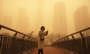 Flights Canceled During China's Worst Sandstorm in a Decade