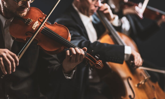 Strings make up the bulk of an orchestra. (Stokkete/Shutterstock)