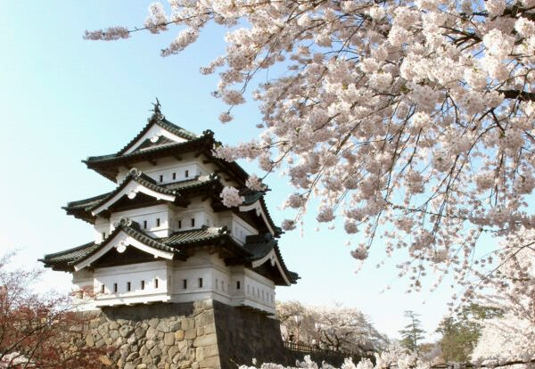 Every spring, hundreds of people flock to the magnificent Hirosaki Castle to take part in the cherry blossom festival. (Koichi Kamoshida/Getty Images)