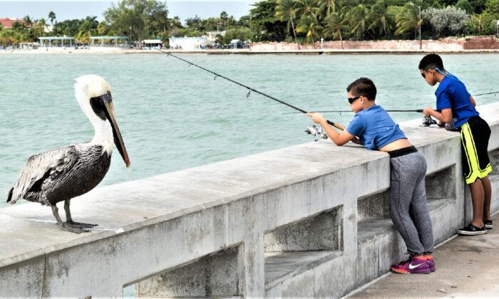 Boys fish off a bridge in the Florida Keys. (Courtesy of TasFoto/Dreamstime.com)