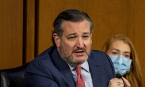 Ted Cruz Blasts Gun Control Proposals in the Wake of Colorado Shooting