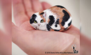 Japanese Artist Turns Pebbles Into Adorable Critters You Can Hold in the Palm of Your Hand