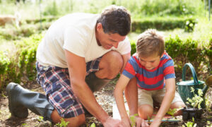 Growing Gardeners: A Case for Starting a Family Garden